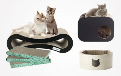 12 Best Cat Scratcher Products – That Are Worth A Try