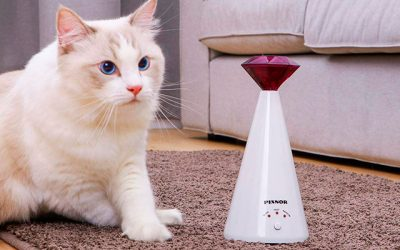 TOP 10 Best Cat Laser Toy In 2019