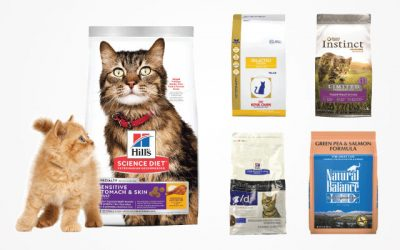 The 9 Best Hypoallergenic Cat Food Brands