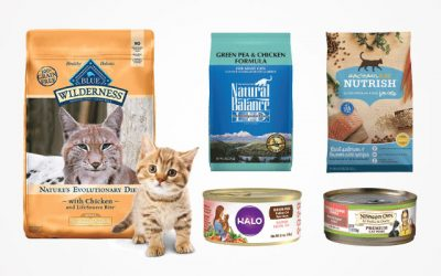 Top 10 Trustworthy Organic Cat Food Review