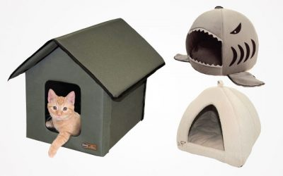14 Worth-Buying Products For Cat Bed: Small To Large