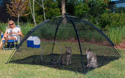 Best Cat Enclosure in 2019 – A Safer Playground for Young Kitties