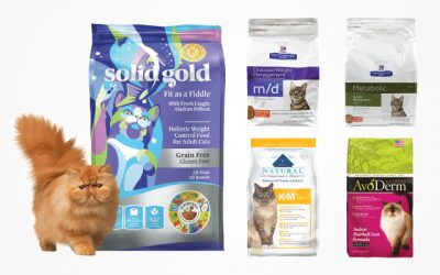 Consider the Best Diet Cat Food in 2019