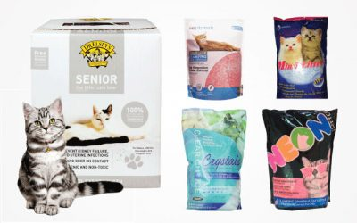 11 Best Silica Cat Litters You Must Try