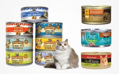 The Best Canned Cat Food in 2019