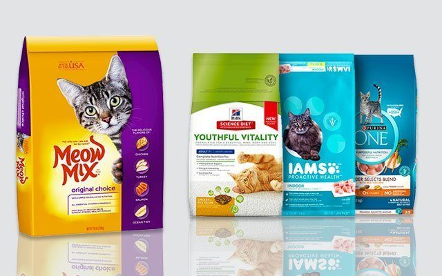 The Best Dry Cat Food You Can Buy in This Season (Update 2019)