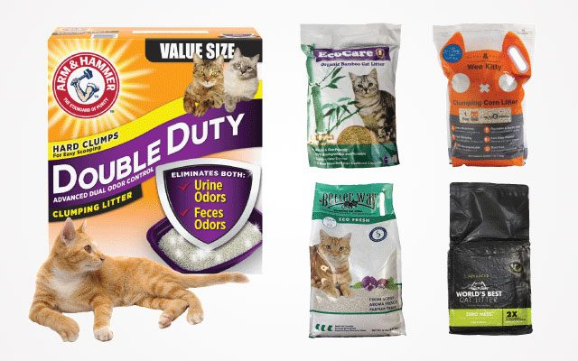 Top Best Flushable Cat Litter Products with High Quality