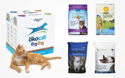10 Best Cat Litter Pellets Worth A Try