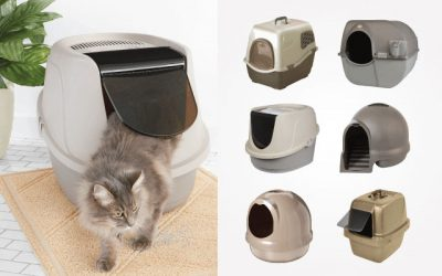 10 Best Covered Litter Boxes in 2019 – That Worth Investment