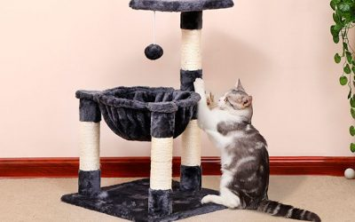 The Best Cat Tree for Any House in 2019 – Pick your Right One