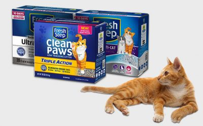 Best Fresh Step's Cat Litters in 2019