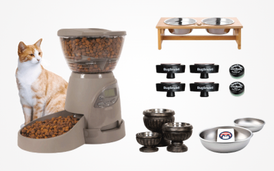 The 16 Bestseller Cat Food Bowls in 2019