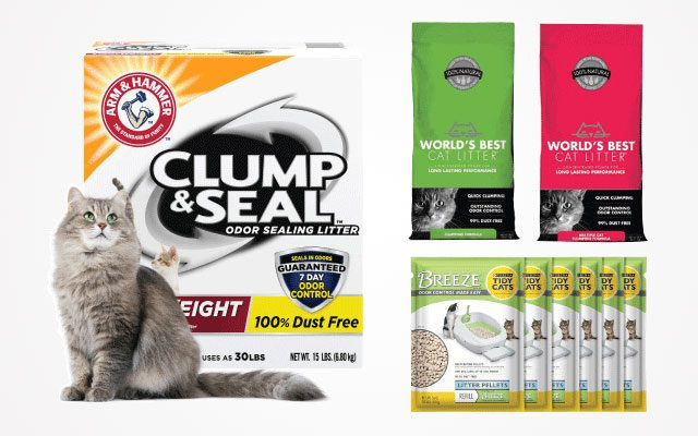 10 Best Dust-Free Cat Litter in 2019