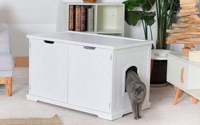 9 Best Hidden Litter Boxes in 2019 – A Smart Solution for Cat Owners with Limited Living Space